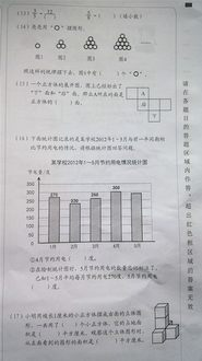 2013年北京市五年级下册抽测数学试卷B